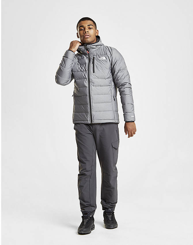 Back Left view of Men's The North Face Aconcagua Jacket in Silver